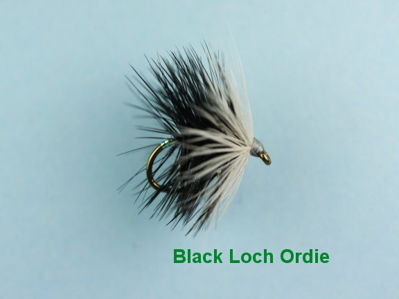 Black Loch Ordie Hackled Wet