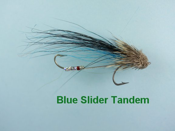 Blue Slider Sea Trout Special