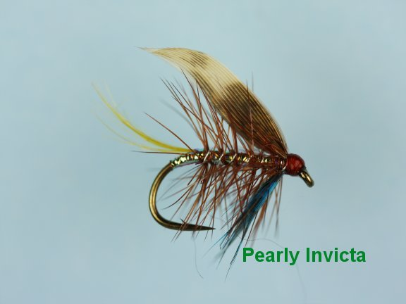 Pearly Invicta Winged Wet