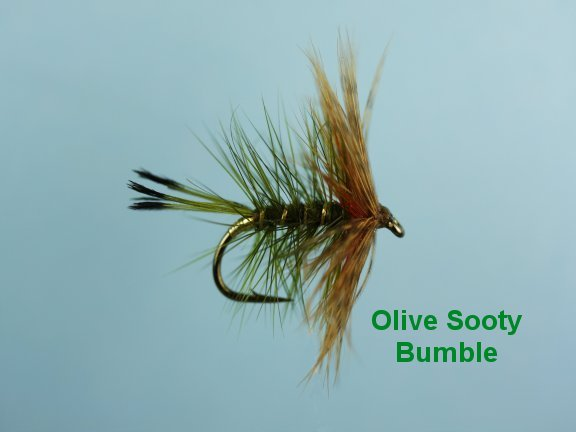 Sooty Olive Bumble