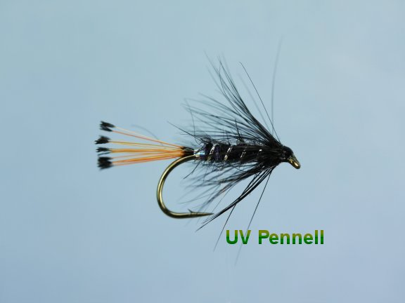 UV Pennell Hackled Wet